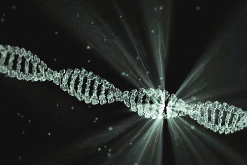 VeroGenomics: innovative genomic technologies for personalized diagnosis
